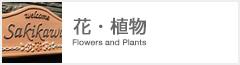 【花・植物】 見ているだけで幸せな気分になれる花・植物シリーズです。 可憐でカラフルなデザインから、薔薇などを使ったクールなデザインまで種類はさまざまです。 花や植物がポイントの表札で、他とは違う個性的な表札でお住まいを華やかにしてみてはいかがですか。